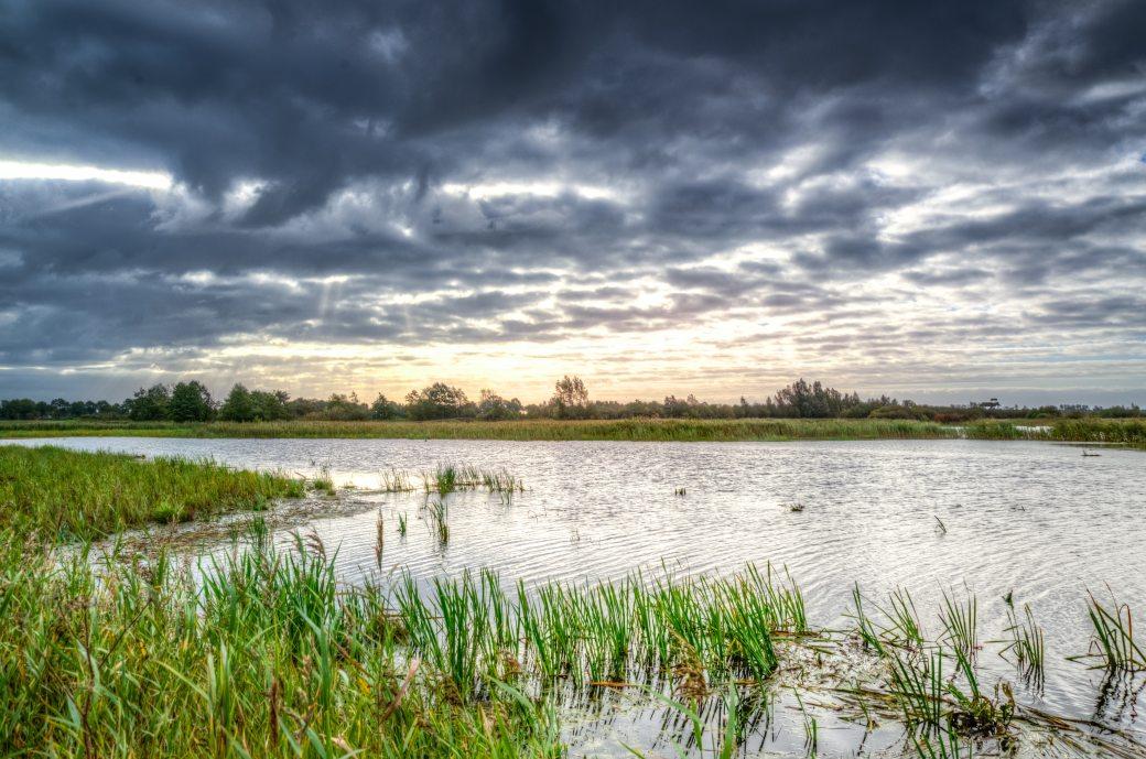 calm-clouds-dawn-633888